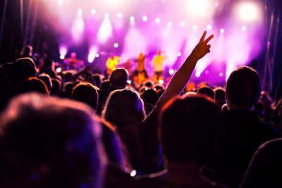 music_people-on-music-concert_659K[1]